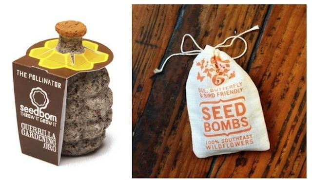 diy seed bombs to be tossed makery