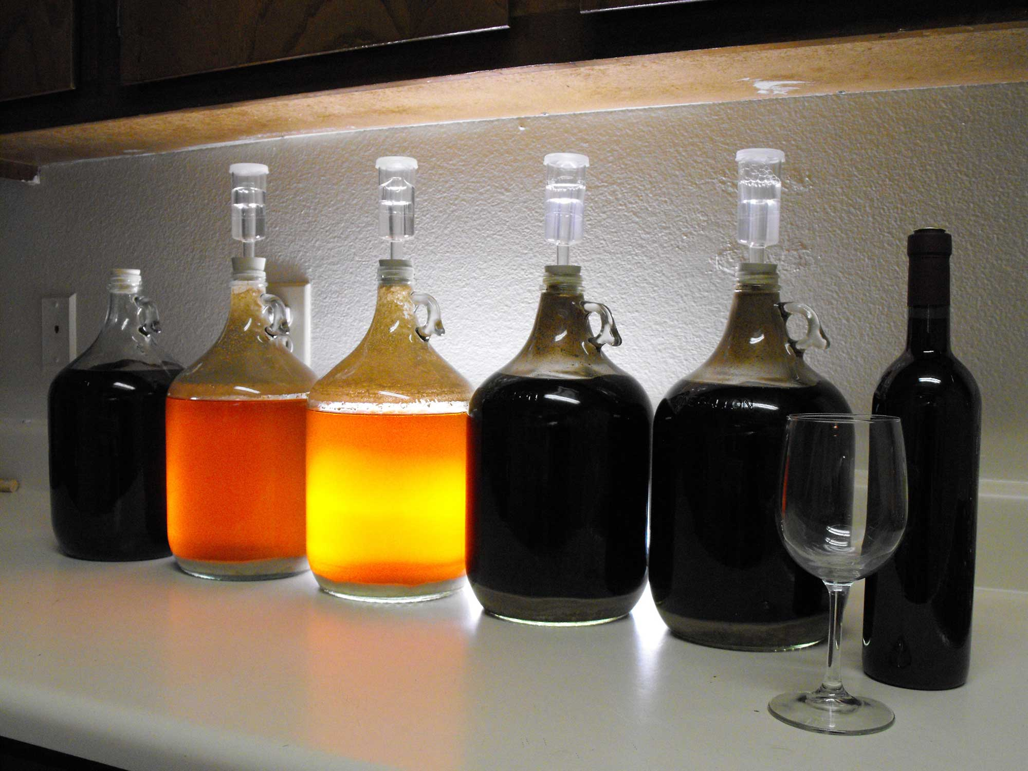 Do it Yourself: brew your own beer : Makery